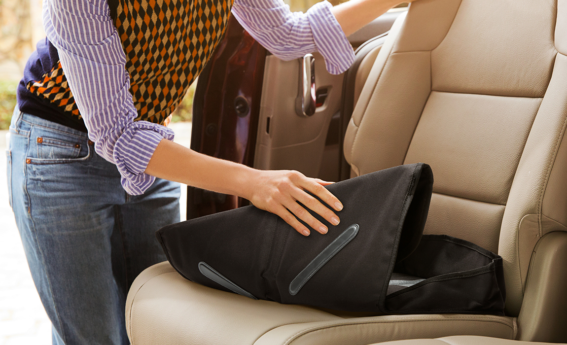 carousel image Booster Seat Protector - 3